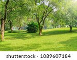 day time view of the city park. ... | Shutterstock . vector #1089607184