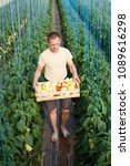 farmer carrying a crate of... | Shutterstock . vector #1089616298