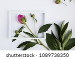composition from flowers. white ... | Shutterstock . vector #1089738350