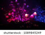 three fantasy glowing mushrooms ... | Shutterstock . vector #1089845249