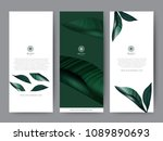 branding packaging tropical... | Shutterstock .eps vector #1089890693