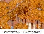 metal rust background metal...   Shutterstock . vector #1089965606