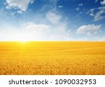 wheat field and sun in the sky  | Shutterstock . vector #1090032953
