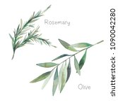 watercolor decorative herbs set.... | Shutterstock . vector #1090042280