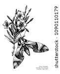 oleander hawk moth design....   Shutterstock .eps vector #1090110179