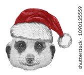 Portrait Of Meerkat With Santa...
