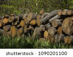 the pile of firewood stacked | Shutterstock . vector #1090201100