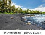 hawaiian green turtles relaxing ... | Shutterstock . vector #1090211384