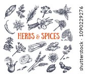 herbs and spices condiments.... | Shutterstock .eps vector #1090229276