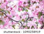 defocus floral background... | Shutterstock . vector #1090258919