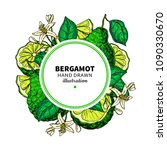 bergamot vector drawing frame.... | Shutterstock .eps vector #1090330670