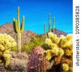 cactus mountains blue sky epic... | Shutterstock . vector #1090385828