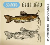 bullhead sketch for fish store... | Shutterstock .eps vector #1090392086