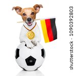 soccer jack russell  dog... | Shutterstock . vector #1090392803
