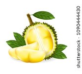 king of fruits  durian isolated ... | Shutterstock .eps vector #1090444430