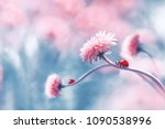 two ladybugs on a pink spring... | Shutterstock . vector #1090538996