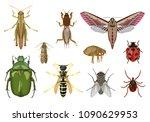 vector detailed set of...   Shutterstock .eps vector #1090629953