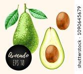 set of avocados | Shutterstock .eps vector #1090645679