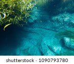 underwater shot of the steep... | Shutterstock . vector #1090793780