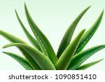 aloe vera plant with dew in 3d... | Shutterstock .eps vector #1090851410