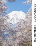 sakura tree and mountain fuji... | Shutterstock . vector #1090920998