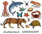 set of animals. reptile and... | Shutterstock .eps vector #1090943399