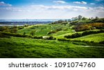 Small photo of hills and mountain bike trails of Hadleigh Park near Benfleet, Essex, UK