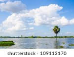 Tree flooded and blue sky in thailand - stock photo