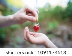 parent and child hand over... | Shutterstock . vector #1091174513