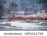 Small photo of river regen in winter landscape bavarian outback