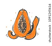papaya tropical fruit in doodle ... | Shutterstock .eps vector #1091245616