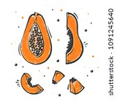 set of papaya exotic fruit in... | Shutterstock .eps vector #1091245640