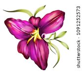 isolated hand drawn exotic... | Shutterstock . vector #1091252573