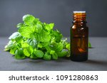 fresh homemade green peppermint ... | Shutterstock . vector #1091280863