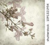 textured old paper background... | Shutterstock . vector #1091321954