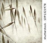 textured old paper background... | Shutterstock . vector #1091321978