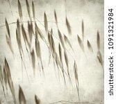 textured old paper background... | Shutterstock . vector #1091321984
