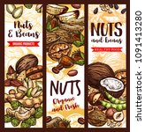 nuts  beans and fruit seeds mix ... | Shutterstock .eps vector #1091413280