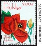 poland   circa 2005  a stamp... | Shutterstock . vector #1091467970