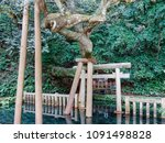 a beautiful spring water of a... | Shutterstock . vector #1091498828