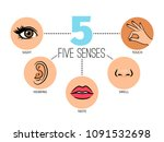 five human feelings. mouth or... | Shutterstock .eps vector #1091532698