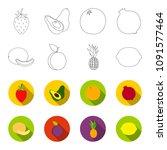 melon  plum  pineapple  lemon... | Shutterstock .eps vector #1091577464