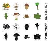 oak leaf  mushroom  stump ... | Shutterstock .eps vector #1091581160
