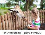 family feeding giraffe in zoo.... | Shutterstock . vector #1091599820