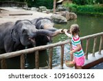 family feeding elephant in zoo. ... | Shutterstock . vector #1091603126