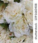 artificial flower image   Shutterstock . vector #1091660408