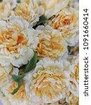artificial flower image   Shutterstock . vector #1091660414