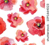 seamless pattern with poppy... | Shutterstock . vector #1091664023