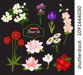 flower icon with set of... | Shutterstock .eps vector #1091666030