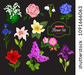 Spring Flower Cartoon Icon Set...